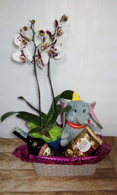 desayunossorpresas.com-detalle-con-orquidea-de-dos-varas