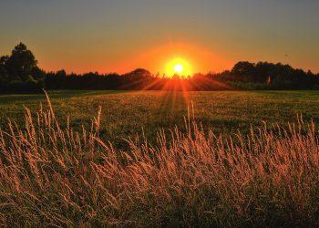 La belleza de los días. imagen para blog