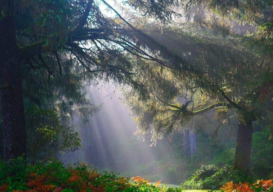 post claro amanecer- blog desayunossorpresas.com, desde PX